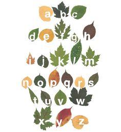 cut out leaf typography by twan van keulen