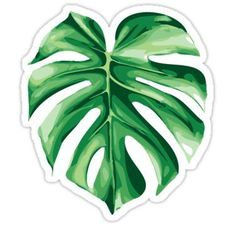Monstera stickers featuring millions of original designs created by independent artists. Decorate your laptops, water bottles, notebooks and windows. Cute Laptop Stickers, Phone Stickers, Journal Stickers, Cool Stickers, Printable Stickers, Planner Stickers, Kawaii Stickers, Homemade Stickers, Red Bubble Stickers