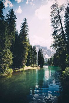 obsol: obsol: eartheld: mostly nature [nature...