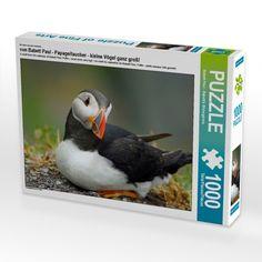 Puzzle, Parrot, Animals, Products, Little Birds, Diving, Feel Better, Calendar, Boden