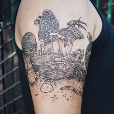 Vintage Etchings Tattoo of Flora and Fauna