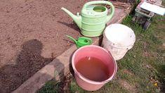[Élet Iskola]- Kertészkedés tavaszi munkák..