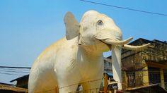 Un sympathique passant à #Mandalay