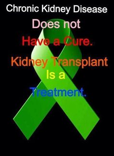 Kidney Transplant is Not a Cure - Cindy's Mixing Bowl Inspiration