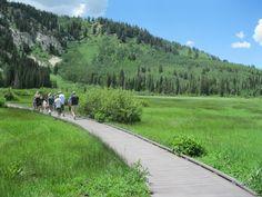 Silver Lake - Brighton - Salt Lake City, UT - Kid friendly activity reviews - Trekaroo