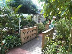 #KeyWest #Butterfly Conservatory: What a lovely place!