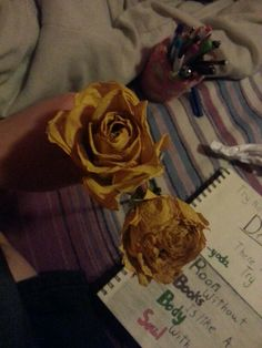 Cool dried flower