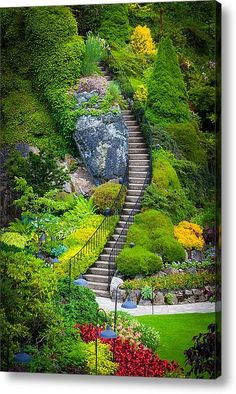 Butchart Gardens Stairs in Vancouver, BC, Canada.I remember being there! Pathway in Butchart Botanical Gardens in Vancouver, BC, Canada Beautiful World, Beautiful Gardens, Beautiful Places, Amazing Gardens, Beautiful Gorgeous, Parks, Magic Garden, Garden Stairs, Sunken Garden