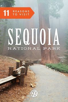 Here are 11 Reasons to Visit Sequoia National Park - Great campgrounds too
