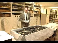 Great video of Mary Todd Lincoln's Strawberry dress. It was to be on display in 2011.