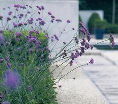10 tips for a stylish contemporary garden design Landscape Materials, Landscape Plans, Landscape Design, Contemporary Garden Design, Contemporary Landscape, Contemporary Office, Contemporary Architecture, Landscape Architecture, Landscaping Tips