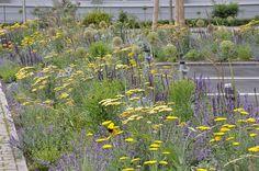 Bettina Jaugstetter - Büro für Garten- und Landschaftsarchitektur