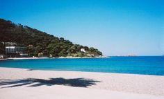 Lapad Beach - Dubrovnik, Croatia stayed in hotel Vis - needle fish, snorkling!
