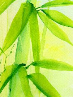 Bamboo Watercolor Arisumi