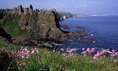 Irlanda -