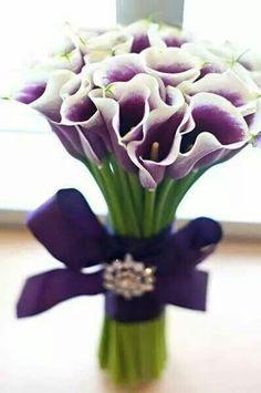 Purple lilies!! My favorite look so far