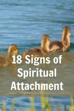 Attachment Spirits are a special type of Earthbound Spirit who attaches to the energy of someone living for the purposes of using their energy. They can cause harm, illness, and even death. But, what are the signs? How can you tell if you're at risk? Find out in this post.