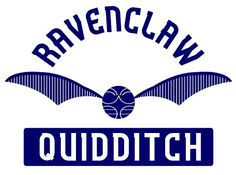 Ravenclaw Quidditch T-Shirt - http://geekarmory.com/ravenclaw-quidditch-t-shirt/