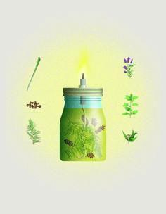 Eine Öllampe gegen Mücken