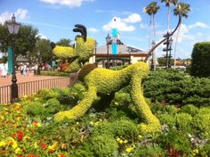 13 Things You Never Knew You Could Do At Disneyland : You Can Eat The Plants In Tomorrowland Walt Disney wanted to create an area of his park that would act as a food farm so fruits and herbs were planted in Tomorrowland for visitors to consume