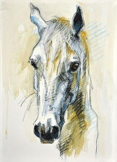 Image © Benedicte GeleAbout the ArtistHorses have always played a part in Bénédicte Gelé's life, although they have not always been in the limelight. Born in 1975 and brought up in the Parisian suburbs, she had no prior history with horses. Horse Head Drawing, Horse Drawings, Watercolor Horse, Watercolor Animals, Watercolor Paintings, Horse Artwork, Horse Paintings, Horse Illustration, Wildlife Paintings