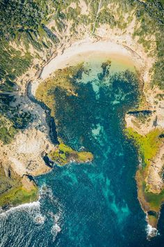 Beaches, wildlife, and epic landscapes. Here are the best things to do on the Mornington Peninsula, where to eat, where to stay & travel tips - by a local! Travel Destinations, Travel Tips, Australian Road Trip, Things To Do, Good Things, Melbourne, Travel Inspiration, Travel Photography, Wildlife