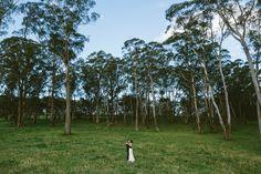 Southern Highlands Wedding. Centennial Vineyard Bowral. Image: Cavanagh Photography http://cavanaghphotography.com.au