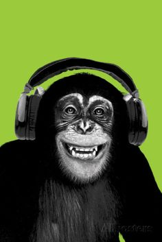 Combining humour and art, this poster features a Chimpanzee wearing headphones. The poster has a modern art style with the chimp and headphones in black and white against a green background. Blue Dog Posters, Cool Posters, Adara Sanchez, Frames For Canvas Paintings, Planet Of The Apes, Affordable Wall Art, Chimpanzee, Primates, Creative Art