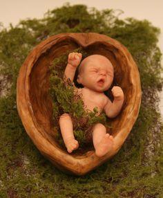 Baby I'm a walnut shell. Polymer Clay Fairy, Polymer Clay Dolls, Polymer Clay Miniatures, Polymer Clay Creations, Clay Fairies, Flower Fairies, Troll, Fairy Figurines, Baby Fairy