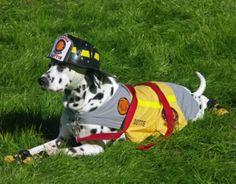 cane pompiere