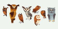James Gilleard birds owl illustration