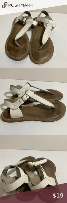 Salt Water Sandals by Hoy Shoe Girls/' Sun-San Swimmer Flat Sandal Silver 6 M ...