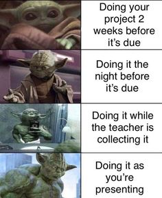 """Cute Baby Yoda Memes Because The Internet Can't Even - Funny memes that """"GET IT"""" and want you to too. Get the latest funniest memes and keep up what is going on in the meme-o-sphere. Funny Animal Pictures, Funny Images, Funny Animals, Funny Pics, Top Funny, Animal Memes, Best Memes, Dankest Memes, True Memes"""