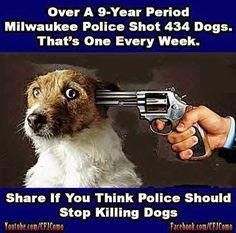 "THIS HAS REACHED NEAR EPIDEMIC PROPORTIONS. Of all the cases of senseless and sadistic executions performed I have only heard of 1 {ONE) officer facing indictment and  that was because he and his partner used a ""knife"" on the poor animals throat. THOUGH. It should be made clear that  1. Police have been executing and blinding people FOR LIFE without so much as losing their job. 2. The officer who used the knife probably won't even have to enter a courtroom before it's dismissed."