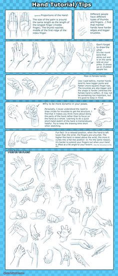 Hand Tutorial -Tips+Reference- by *Qinni on deviantART