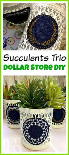 Easy Dollar Store Craft! You don't have to spend a lot of money to make something pretty! Make this easy dollar store DIY decor project and create a beautiful succulents trio!