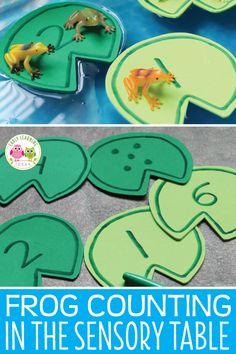 21 best life cycle of frog images frogs kindergarten science rh pinterest com