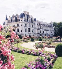 Loire Valley for bringing out your inner princess.