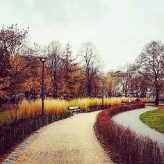 Park Polińskiego na Grochowie Country Roads, Park, Parks
