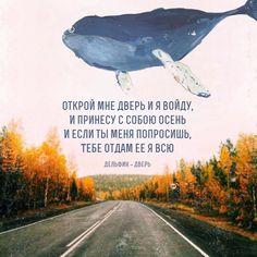 Дзен | ВКонтакте