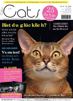 😻 Bist du #glücklich? Der neue Weg für ein erfülltes #Katzenleben 😻  Jetzt in Our Cats: https://www.united-kiosk.de/our+cats+-+epaper-ebinr_2103732.html #Katze #Tierlieb #Leckerlie