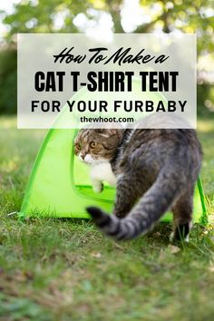 How To Make The Cutest T-Shirt Cat Tent Diy Cat Tent, Diy Tent, Homemade Cat Toys, Cat Shelves, Animal Projects, Cute Tshirts, Pet Beds, Fur Babies
