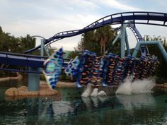 A flying coaster with an 113 foot drop and 56 mph, this ride is definitely for thrill-seekers.  And the real thrill is when you are in that 98 foot pretzel loop!  In this ride, you will REALLY know how a manta ray swims!  While you wait to get on, you can see the fantastic aquarium.