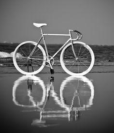 Fixie World ( Fixed Gear Bicycle, Bicycle Art, Road Bikes, Cycling Bikes, Bike Rack, Bike Design, Bike Life, Reflection, Wheels