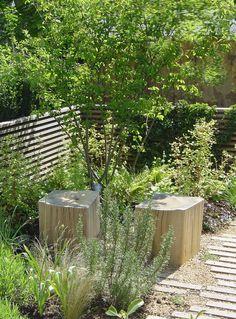 Oak cubes and multi-stemmed Amelanchier lamarckii are a focal point from the house - Garden design project Garden On A Hill, Terrace Garden, Garden Planters, Back Gardens, Outdoor Gardens, Evergreen Climbers, Townhouse Garden, Woodland Plants, Specimen Trees