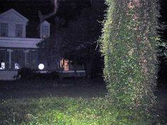 1000+ images about Do You Believe In Ghosts? on Pinterest ...