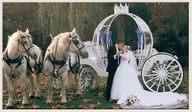 Cinderella Wedding Horse Drawn Carriage