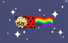 Cat Noir/ Ladybug.