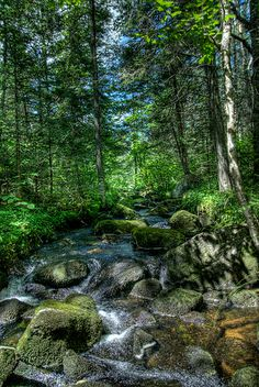Beaver Brook, Silver Ledge Trail, Groton State Forest, Vermont