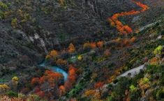 "See 86 photos and 12 tips from 666 visitors to Φαράγγι του Βίκου (Vikos Gorge). ""It takes almost 6 hours to hike along the gorge, but it worth every. Mountain Wallpaper, Nature Wallpaper, Tree Photography, Landscape Photography, Places In Greece, Tree Artwork, Forest Illustration, Photo Tree, Photo Story"